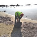 TRNC Environmental Protection Department initiated beach cleaning (2)