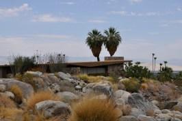 Desert Home 6