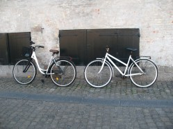 Bicycle duo