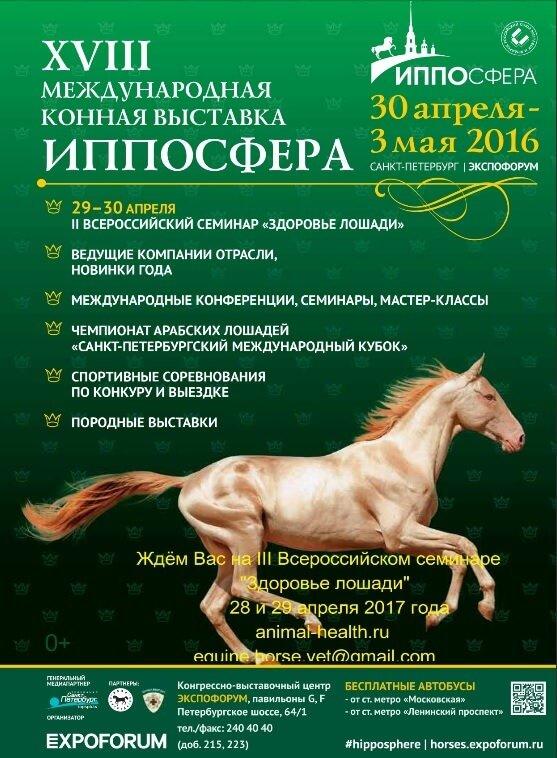 XVIII Международная конная выставка ИППОСФЕРА
