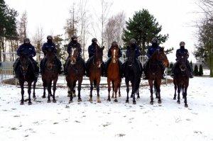 policyjni jeźdźcy i konie służbowe stoją w szeregu pozują do zdjęcia na dworze na tle zaśnieżonego wybiegu dla koni