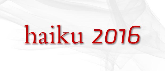 Poziv na sudjelovanje u stvaranju HAIKU ZBORNIKA – LUDBREG 2016.