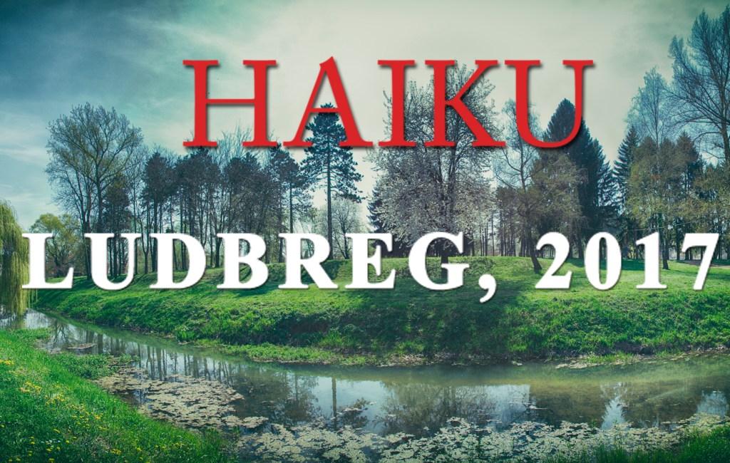 Prijava za sudjelovanje Haiku Ludbreg 2017