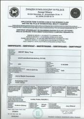 Certyfikat użytkowości