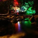 赤目四十八滝の紅葉はめちゃくちゃ綺麗!?【滝と紅葉のライトアップ】