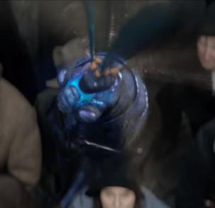 映画ファンタスティックビーストの登場する魔法生物ビリーウィグの画像