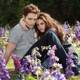 映画『トワイライト』の主人公ベラとエドワードの画像