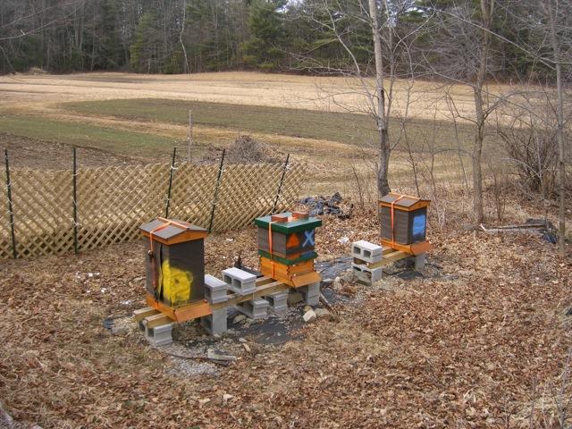 The Finson Farm Apiary - March 2010
