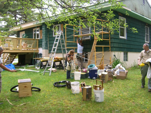 Setting up for the honey bee removal