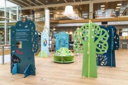 Kolding Bibliotek Fang Fortællingen design til børnebiblioteker #børnebiblioteker #designtilbørn #designtegnestuen #designtegnestue #D-sign Tegnestuen