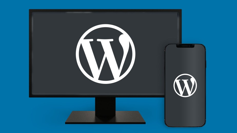 WordPress Consulting and Hosting Services