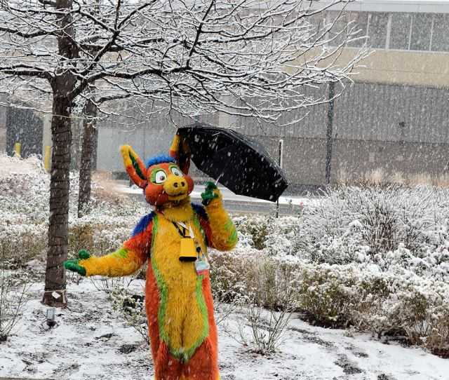 Singin In The Snow