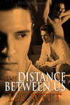 The Distance Between Us (Distance Between Us, #1)
