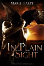 In Plain Sight (Cougar Falls, #2)