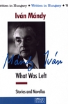 What Was Left: Stories and Novellas