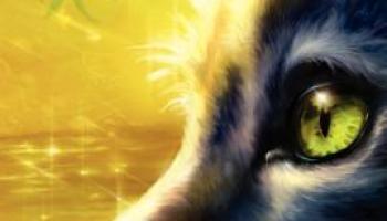 Forest of Secrets (Warriors #3) – Erin Hunter