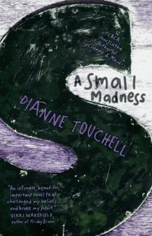 A Small Madness by Dianne Touchell Review: Teenage Pregnancy Consequences