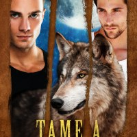 Spotlight: Tame a Wild Human by Kari Gregg #DarkErotica #MMFantasy