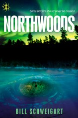 Book cover for Northwoods by Bill Schweigart