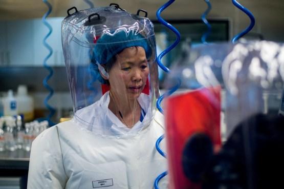 Wuhan Institute of Virology Covid-19 coronavirus lab