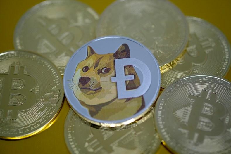 Dogecoin Bitcoin Netherlands January 2021