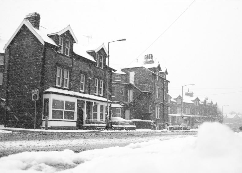1928: A mild winter everywhere