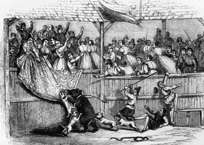 12th century: Baiting emerges as a European pastime
