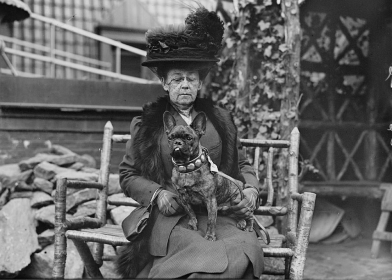 1884: The American Kennel Club is formed