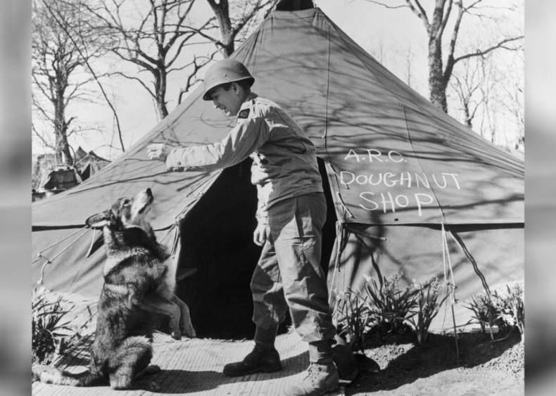1943: A dog is decorated