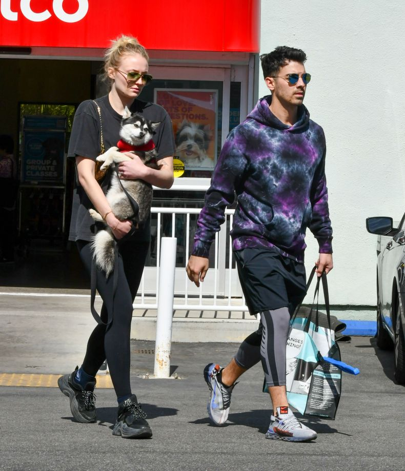 Sophie Turner and Joe Jonas with dog