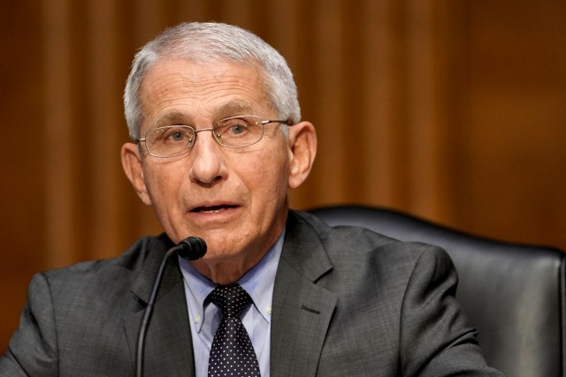 Anthony Fauci Speaks During a Senate Hearing