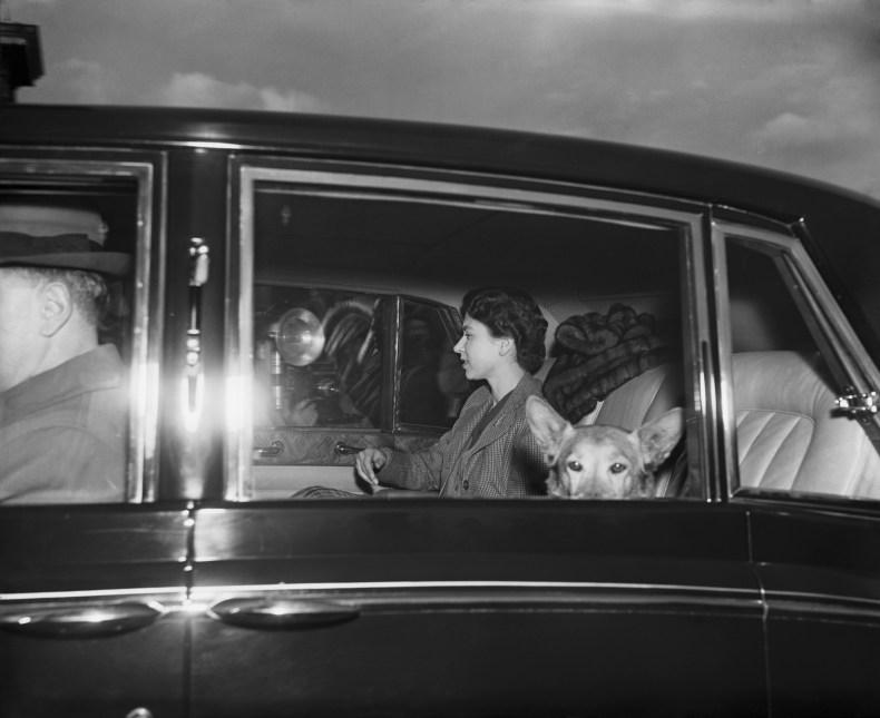Queen Elizabeth and Corgi on Charles' Birthday