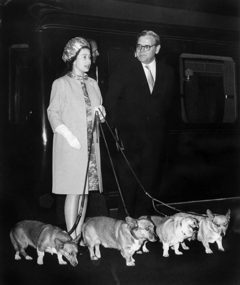 Queen Elizabeth and Corgis Meet Apollo Astronauts