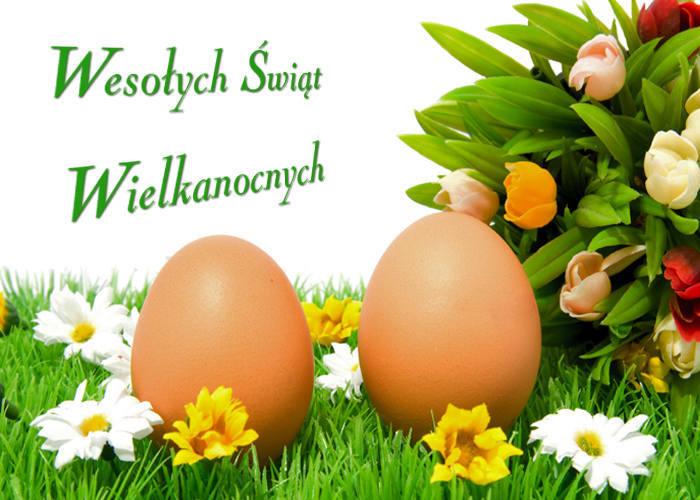 Znalezione obrazy dla zapytania duży koszyk z jajami