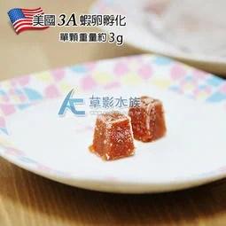 【AC草影】冷凍商品!美國3A級豐年蝦磚【一份】豐年蝦卵 燈科魚 蝦飼料 - 露天拍賣