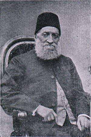 İngilizci Kamil Paşa ile ilgili görsel sonucu