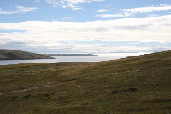Falkland Islands - Port San Carlos