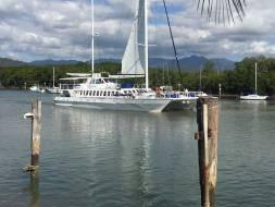 Reef marina Port Douglas