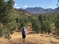 Brachina Gorge - my favorite spot. Spectacular views