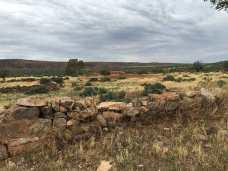 Kanyaka historic site wall