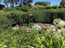 sinkhole garden