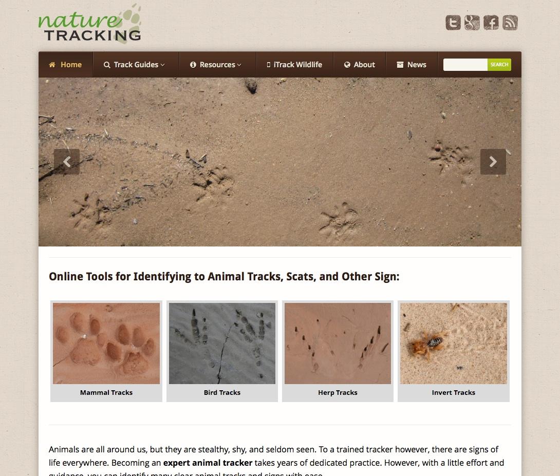 Tools For Identifying Animal Tracks Naturetracking