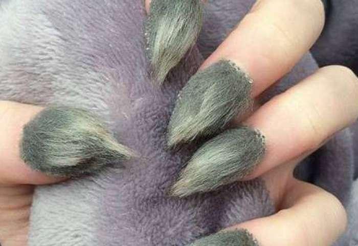 Uñas Decoradas 2016 El Furor De Las Furry Nails