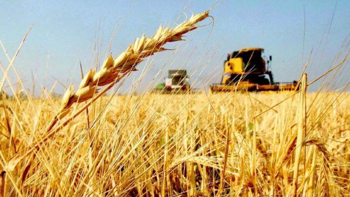 Rusia es el primer exportador mundial de trigo - Por Jorge Castro