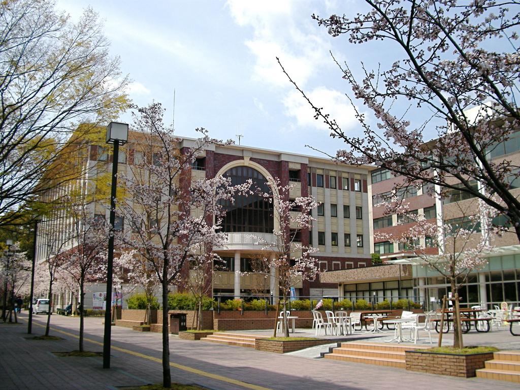 dual degree di Asia - LIberal Arts di Ritsumeikan University
