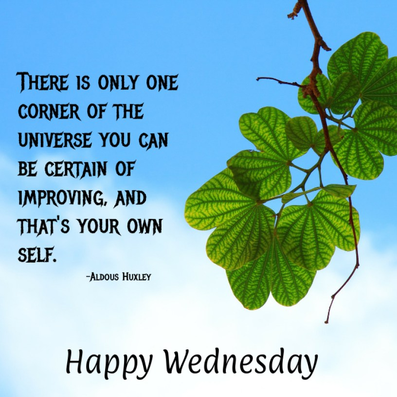 Happy Wednesday Template | PosterMyWall