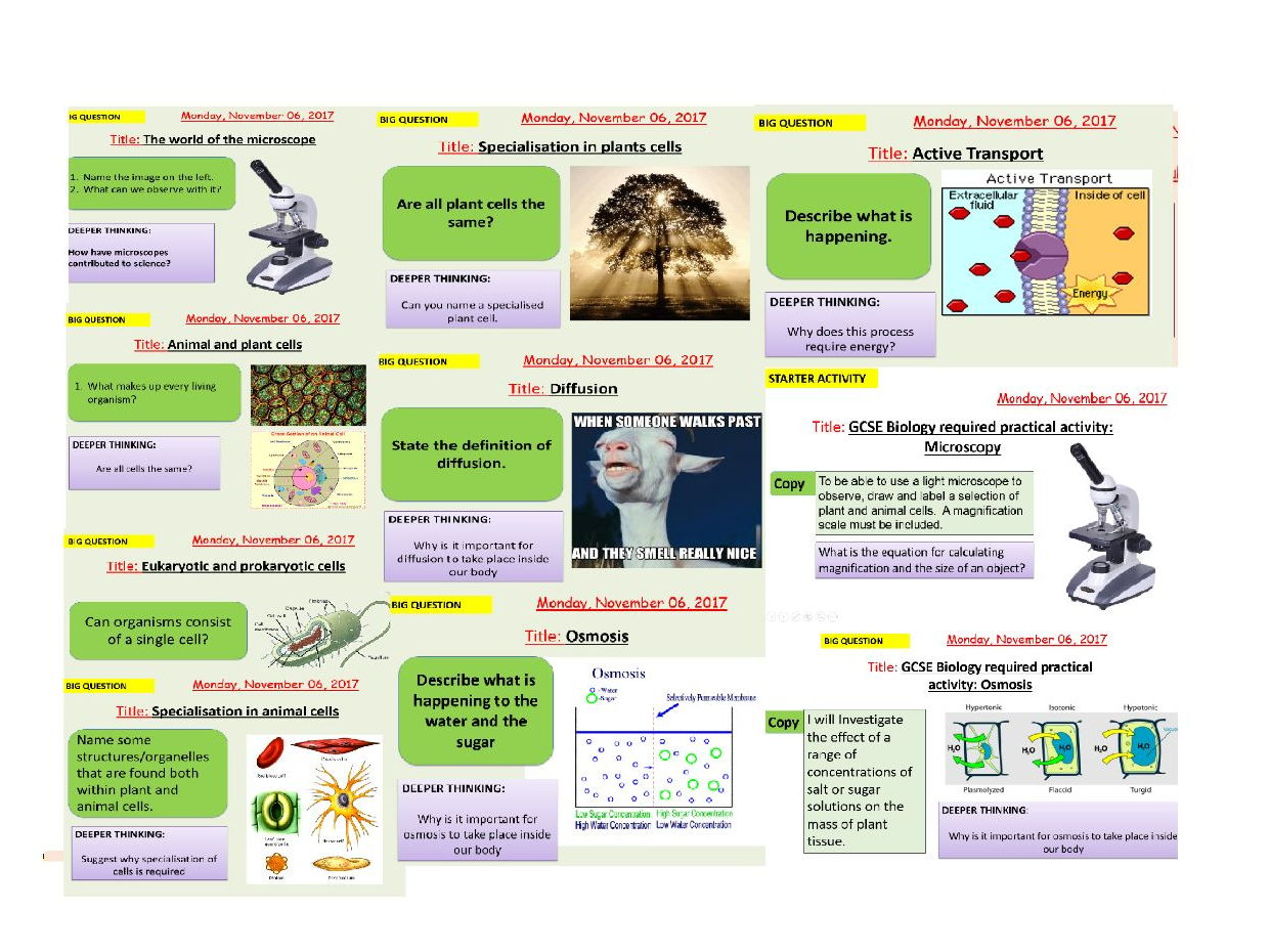 Aqa New Specification B1 Cell Structure And Transport