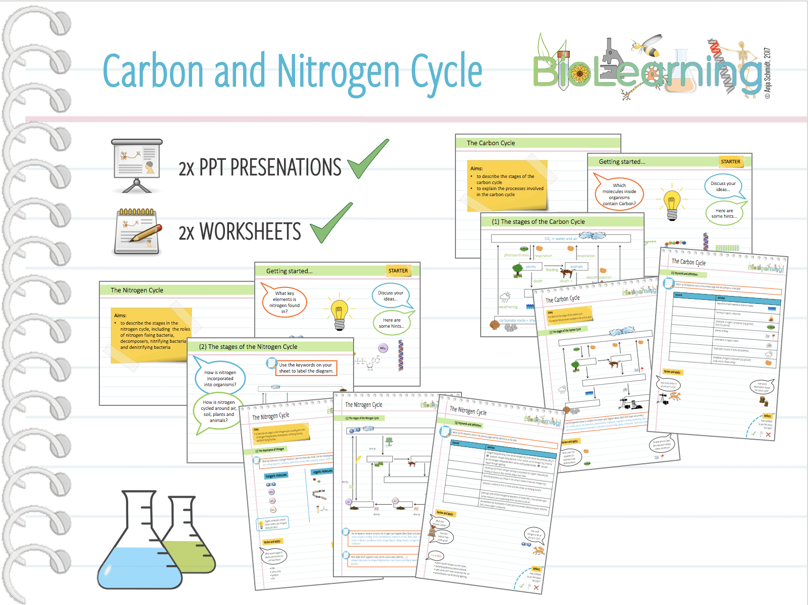 4x Carbon And Nitrogen Cycle
