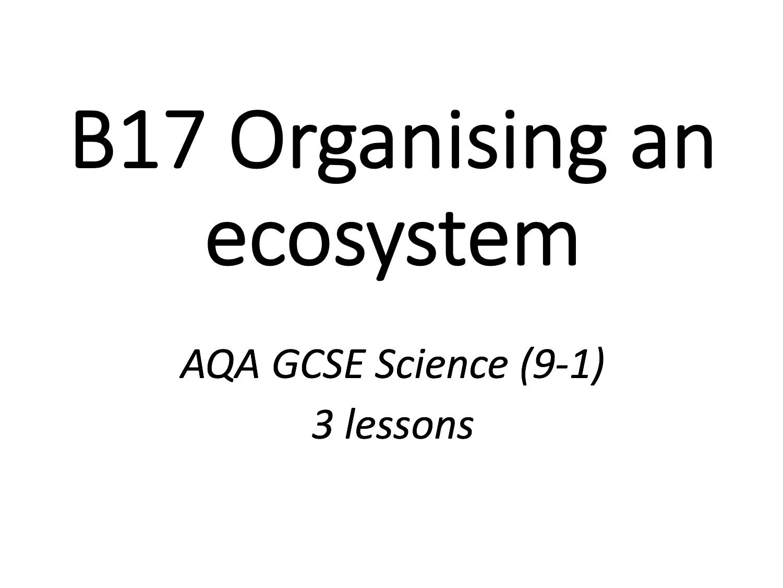 B17 Organising An Ecosystem