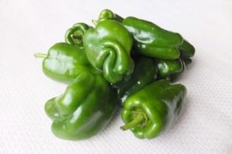 ピーマン �ー�ん 緑 ��り 食�物 ��も� ミドリ ��も ��も ��� ���� 細長� ����� 艶々 �や�や ツヤツヤ 光沢 ���� 野� や��